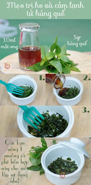Top 10 bài thuốc trị ho, đau họng, cảm cúm và cảm lạnh từ nguyên liệu tự nhiên, dễ kiếm, dễ làm