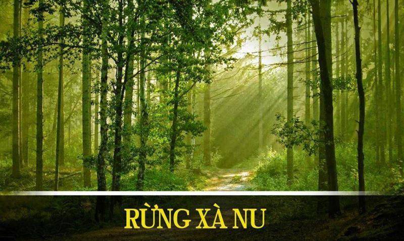 top 10 bai van mau phan tich nhan vat tnu 1 - Top 10 bài văn mẫu phân tích nhân vật Tnú