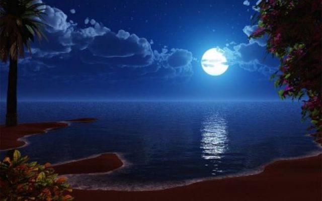 top 10 bai van mau phat bieu cam nghi ve bai tho canh khuya 2 - Top 10 bài văn mẫu phát biểu cảm nghĩ về bài thơ Cảnh khuya