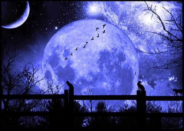 top 10 bai van mau phat bieu cam nghi ve bai tho canh khuya 8 - Top 10 bài văn mẫu phát biểu cảm nghĩ về bài thơ Cảnh khuya